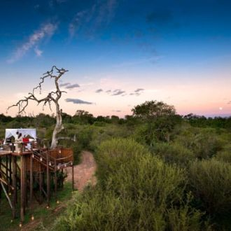 ©Lion Sands Private Game Reserve